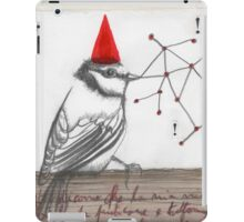 Rhymes & Reasons  iPad Case/Skin