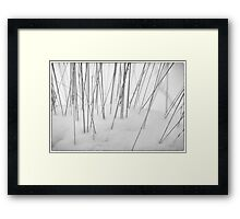 Grasses in the Snow Framed Print