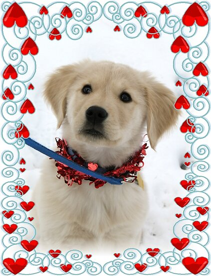 Mickey the Love pup by Liesl Gaesser