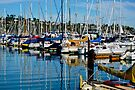 Sausalito, California, USA Marina by Thomas Barker-Detwiler