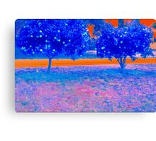 Orange trees in abstract Canvas Print