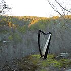 Majestic Harp III by Beth Stockdell