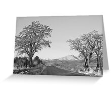 Country Drive Longs Peak View BW Greeting Card