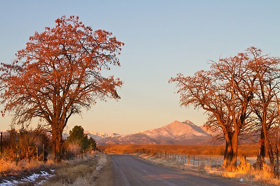Country Drive Longs Peak View by Bo Insogna