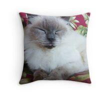 Purr...just purr. © Throw Pillow