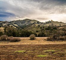 Sunol Regional Wilderness by James Watkins