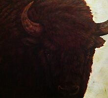 Wisent IV by A V S TURNER