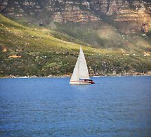 Sailing by Roxanne du Preez