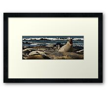 Don't Push Me! Framed Print
