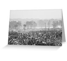 Ashdown Forest in the Snow Greeting Card