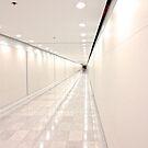 Houston Tunnel by bron stadheim