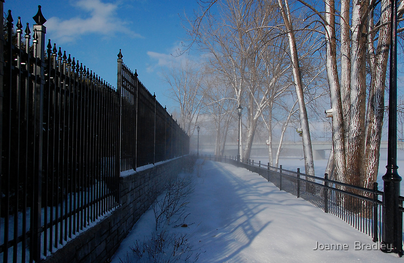 Closed For The Winter by Joanne  Bradley