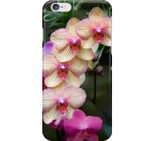 Flowering Orchid iPhone Case/Skin