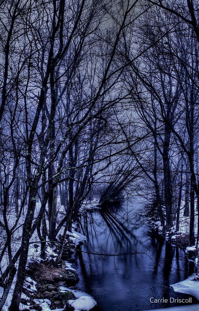 Meander by Carrie Blackwood