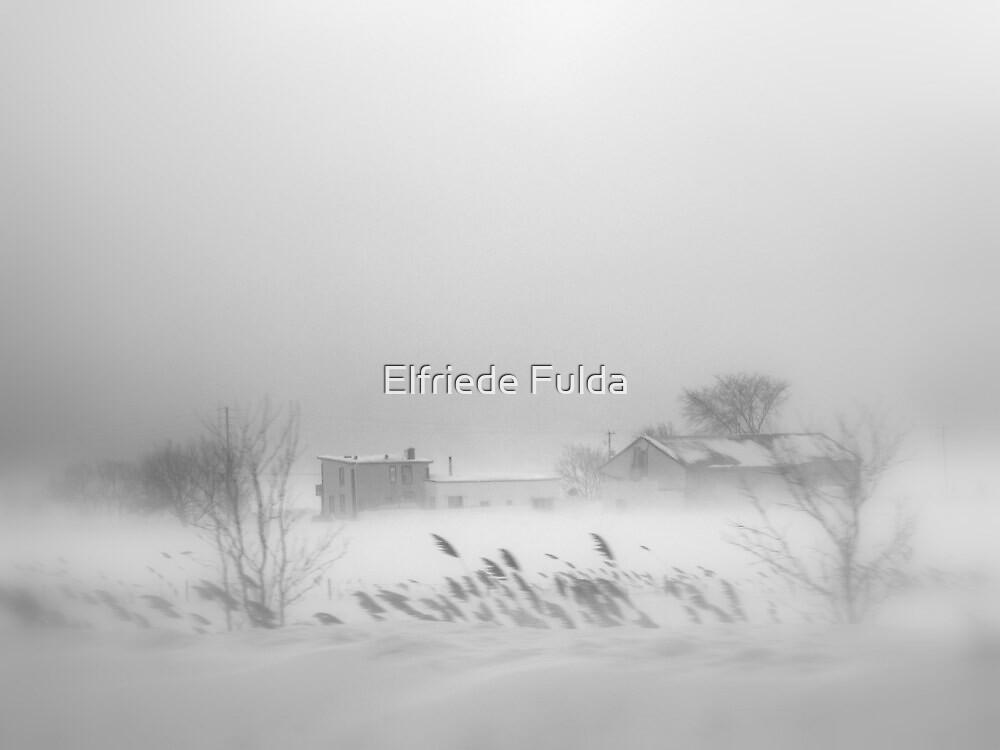 Snowed In ? by Elfriede Fulda