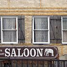 White Elephant Saloon  by John  Kapusta