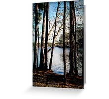 And the Shadows Deepened Greeting Card