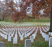 Arlington Cemetery by EmmaLeigh
