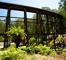 Noojee Trestle Bridge by GP1746