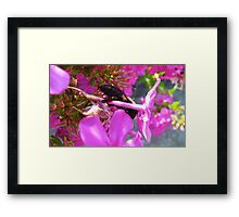 Exhausting every nook and cranny Framed Print