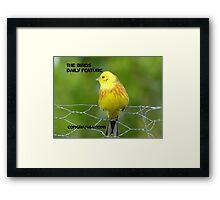Bright & Cheerful Challenge Banner -  Framed Print