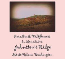 paintbrush wildflowers & mountains near Johnston's Ridge Kids Clothes