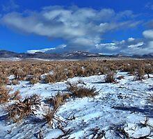 Winnemucca Ranch Valley by SB  Sullivan