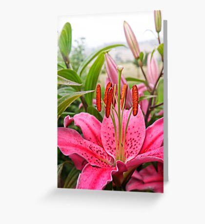 Lovely lady Lilium Greeting Card