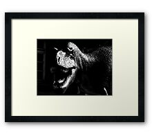 Dinosaur VRS2 Framed Print