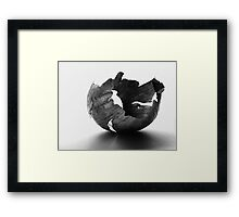 Onion Peel Framed Print