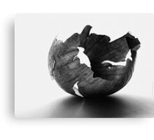 Onion Peel Canvas Print