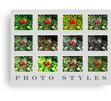 Photography - Picture Styles VRS2 Canvas Print