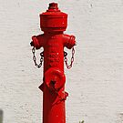 Bright Red Fire Hydrant VRS2 by vivendulies