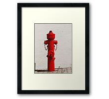 Bright Red Fire Hydrant VRS2 Framed Print