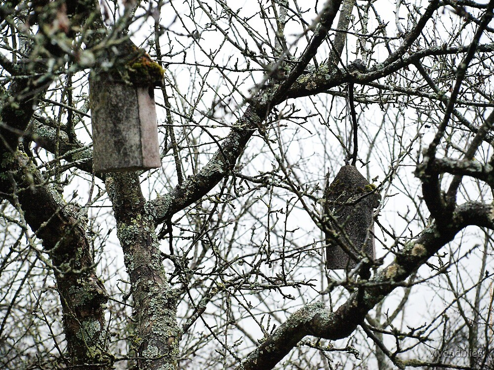 Hanging Bird Houses VRS2 by vivendulies