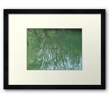 Fish in the Pond VRS2 Framed Print