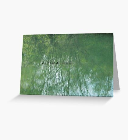 Fish in the Pond VRS2 Greeting Card
