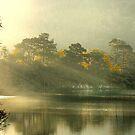 Sunrise Over Rydal by Irene  Burdell