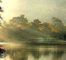 Sunrise Over Rydal by Irene  Burdell
