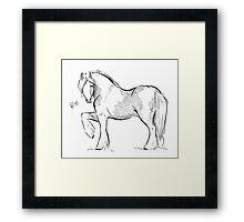 Hi Horse Framed Print