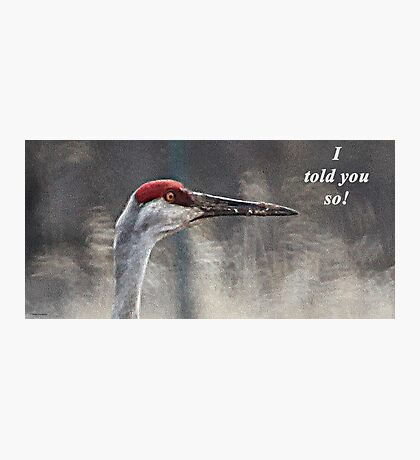 I told you so! Photographic Print