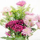 Flowers by JEZ22