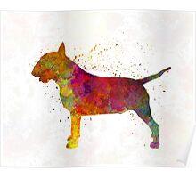 Bull Terrier in watercolor Poster