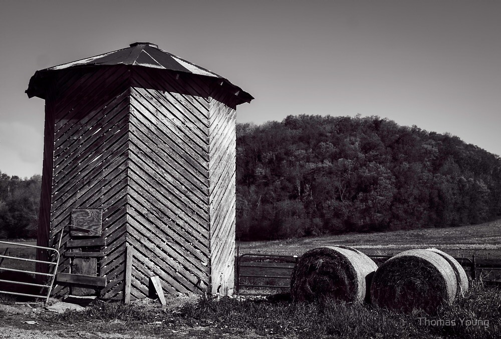 Wooden Corn Crib by Thomas Young
