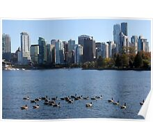 Canada Geese - Vancouver Poster