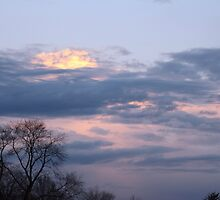 Pretty Sky by Linda Fields