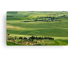 Around Pienza Canvas Print