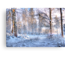 Winter in Forsheda's track I Canvas Print