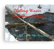 Challenge Winner - Winter Streams Canvas Print