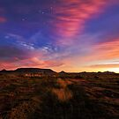 Tafelkop Twilight Starlight by Rob  Southey